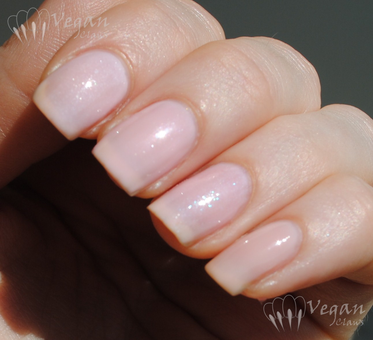 Vegan Claws | A vegan nail polish blog. A celebration of colour and ...