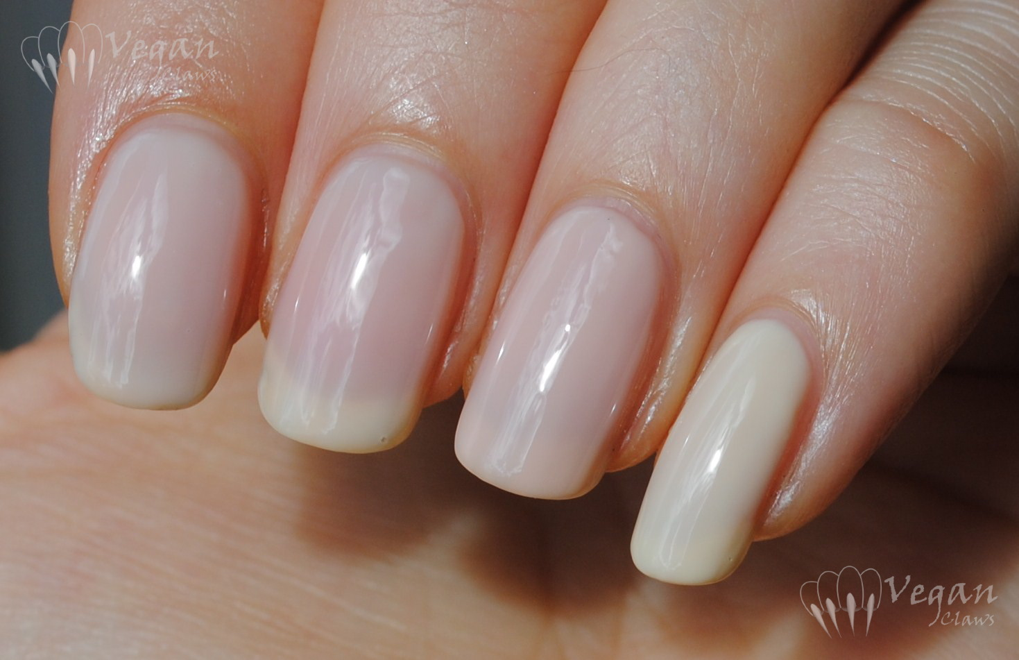 No Miss Casselberry Cream and comparisons | Vegan Claws
