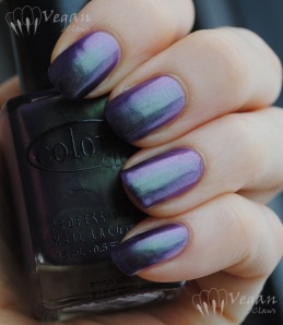 Color Club Port-folio