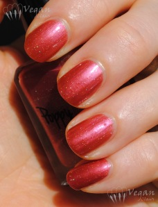 Ruby White Tips Poppy