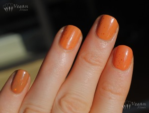 Kunimitsu Orange Tabby