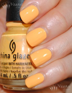chinaglaze_metropollentin_flash2